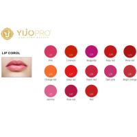 Quality Pure Plant Micro Pigment Ink Liquid For Permanent Makeup Lips / Tattoo 13 Colors wholesale