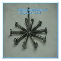 very beautiful molybdenum nuts Mo bolts/nuts and screws M2,M8,m10,m4,m5 etc good price