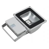China Durable corrosion - resistant 100w high power Industrial led flood light bulb outdoor on sale