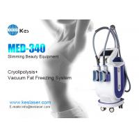 Quality Innovative Cryolipolysis Freeze Fat Reduction Machine With 2 Handles Work Cryotherapy wholesale