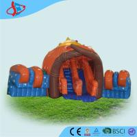 Quality Outdoor Giant Inflatable Slide / Inflatable Jumping Castles For Playground wholesale