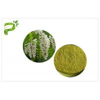 Quality Flower Bud Natural Energy Supplements Vitamin P Rutin Of Sophora Japonica Extract wholesale