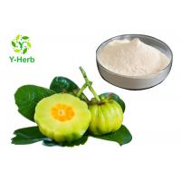 Quality HCA Weight Loss Supplement Powder 50% 60% Hydroxycitric Acid Garcinia Cambogia Extract wholesale