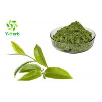 China Health Product Organic Matcha Powder 100% Water Soluble Natural Food Additives on sale