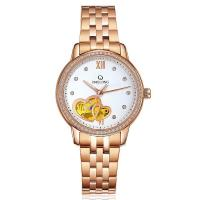 Quality Luxury women automatic mechanical stainless steel chain wrist watches wholesale