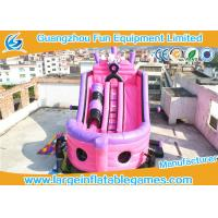 Quality Large Pink Inflatable Pirate Ship Bouncer Slide , Outdoor Inflatable Slide For Sport Games wholesale