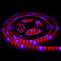 Buy cheap Full specture Waterproof  300LEDS 72W SMD5050 Hydroponic Systems Led Plant grow light from wholesalers