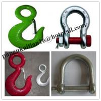 Quality Safety Anchor Shackle&Bow shackle,Stainless steel shackle wholesale