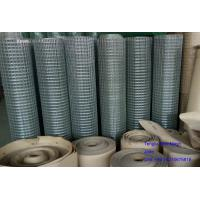 Quality Hot Dipped Galvanized Welded Wire Mesh 1'x1', 1/2'x1/2', 50x50mm,60x60mm for Fence wholesale