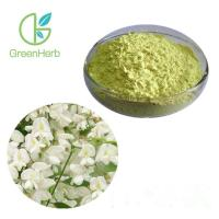 Quality High Purity Fruit Juice Powder Rutin Powder Sophora Japonica Fruit Extract Rutin wholesale
