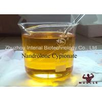 Quality Pharmaceutical Nandrolone Decanoate Steroid Nandrolone Cypionate CAS 601-63-8 wholesale