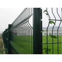 Quality Welded Wire Fence wholesale