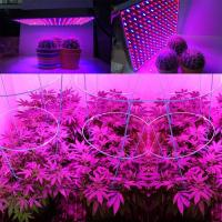 Quality 1000 Watt RED Led Grow Lamp For Cannabis And Marijuana , Aluminum Body wholesale