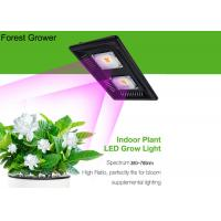 China High Power Full Spectrum 200w Outdoor Grow Lights 50w Commercial Cannabis Grow Lamp on sale
