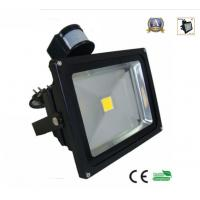 quality 30w motion detector outdoor light for pir security occupancy. Black Bedroom Furniture Sets. Home Design Ideas