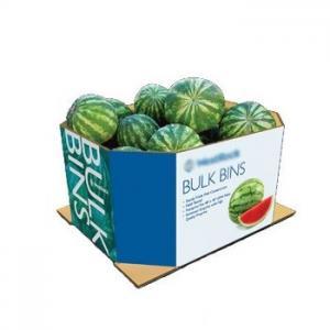 China carton watermelon fruit packaging box on sale