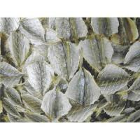 Buy cheap Dried Yellow Stripe Fish Fillet from wholesalers