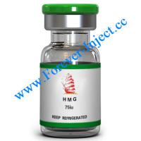 China HMG 75IU, Peptide : Human menopausal gonadotropin, Forever-Inject.cc for sale