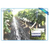 Quality Anti UV PP Non Woven Landscape Fabric for Agricultural Area as Ground Coverings or Plant Bags wholesale
