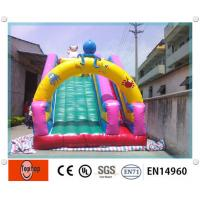 Quality Big Fun Playground inflatable dry slides for Amusement Park Rental business wholesale