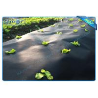Quality Black Garden Weed Control Fabric For MaintainTemperature To Benefit Healthy Growth wholesale