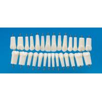 Quality Permanent Straight Rooted Teeth Model With 28 Or 32 Pcs Teeth For Nissin 200 Or 500 wholesale