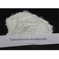 Quality Purity 99% Anabolic Steroids Testosterone Isocaproate CAS 15262-86-9 For Muscle Gaining wholesale