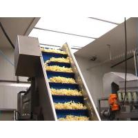 Quality automatic Potato crisps production line 0086-13523507946 wholesale