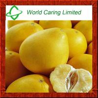 Quality High Quality Herbal Ingredient Grapefruit Seed Extract Naringin 98% HPLC wholesale