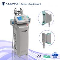 Quality Cryolipolysis fat freeze slimming machine/cryolipolysis slimming machine/cryolipolysis wholesale