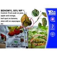 Quality Off - White Powder Protectant Fungicides Benomyl 50% WP 17804-35-2 wholesale
