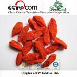 Quality ningxia goji berry wholesale