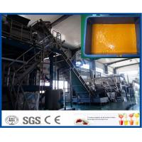 China 380v 50hz Dairy Processing Plant 15kw Power Sea - Buckthorn Juice Production Line on sale
