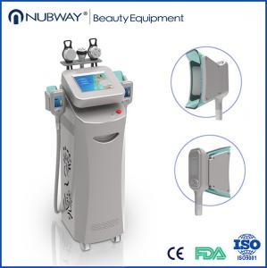 Quality Cryolipolysis Slimming Machine / Cryolipolysis Fat Freeze Slimming Machine wholesale
