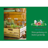Quality Silver Rustproof Garden Landscape Staples With Zinc Coated Nameplates wholesale