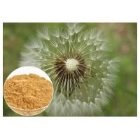 Cheap Dandelion Root Plant Extract Powder Brown Color HPLC 5% Food Grade Anti - Aging for sale