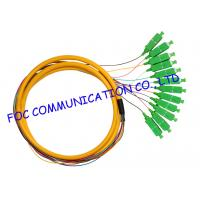 Quality Distribution Fan Out Optical Fiber Pigtail For FTTX , APC sc pigtail single mode 12 Cores wholesale