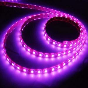 Quality IP68 High Brightness Waterproof Led Light Strips 14.4 Watt CE , 30 / 60 PCS wholesale