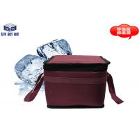 Quality Thermal Insulation Cold Chain Packaging Cooler Bag 0.9L For Travel Insulated Food Bags wholesale