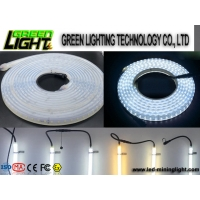 China Silicone 12w Ip68 SMD5050 Flexible Led Light Strips on sale