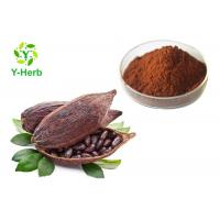 Quality 10% 20% Theobromine Powder Natural Seed Polyphenols Alkalized Cocoa Bean Extract wholesale
