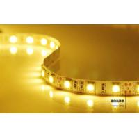 Quality DC12/24V 5m IP65 LED Strips Light , Energy saving Led flexible strip lights wholesale