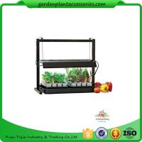 Quality Countertop Grow Light Garden Starter Kit / Plant Starter Kit With Seed Starting Trays wholesale