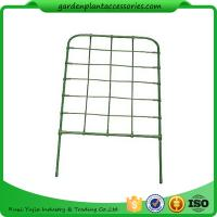 Quality Green Color Plastic Coated Metal Freestanding Garden Flower Trellis For Climbing Plants wholesale
