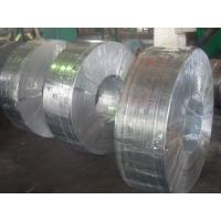 Quality Grade 50, 490, SGC, Q195, SGCC, SGCD spangle Hot Dipped Galvanized Steel Strip / Strips wholesale