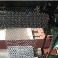Quality Electro Galvanized Chicken Wire Netting for Wall Plastering and Building wholesale