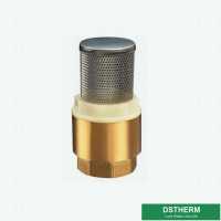 China Customized Heavier Type Brass Check Valve Vertical Stainless Steel Filter For Water Pump on sale