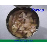 Quality Canned Tuna Fish (CT-006) wholesale