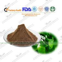 Quality FDA certified Ginkgo Biloba Extract Ginkgoflavon Glycosides24% for bloods health wholesale