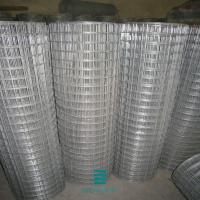 China Prairie mesh fence welded mesh fence galvanized Iron wire plain weave wire mesh fence roll on sale